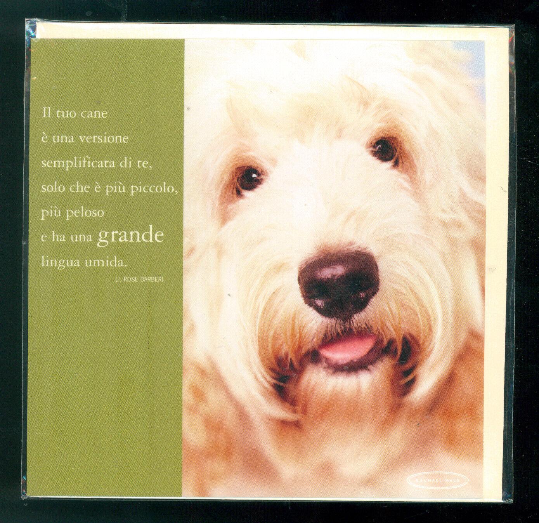 RACHAEL HALE BIGLIETTO AUGURI GIFT CARD MEDIO CANE DOG 2003 JACK THE SPOODLE