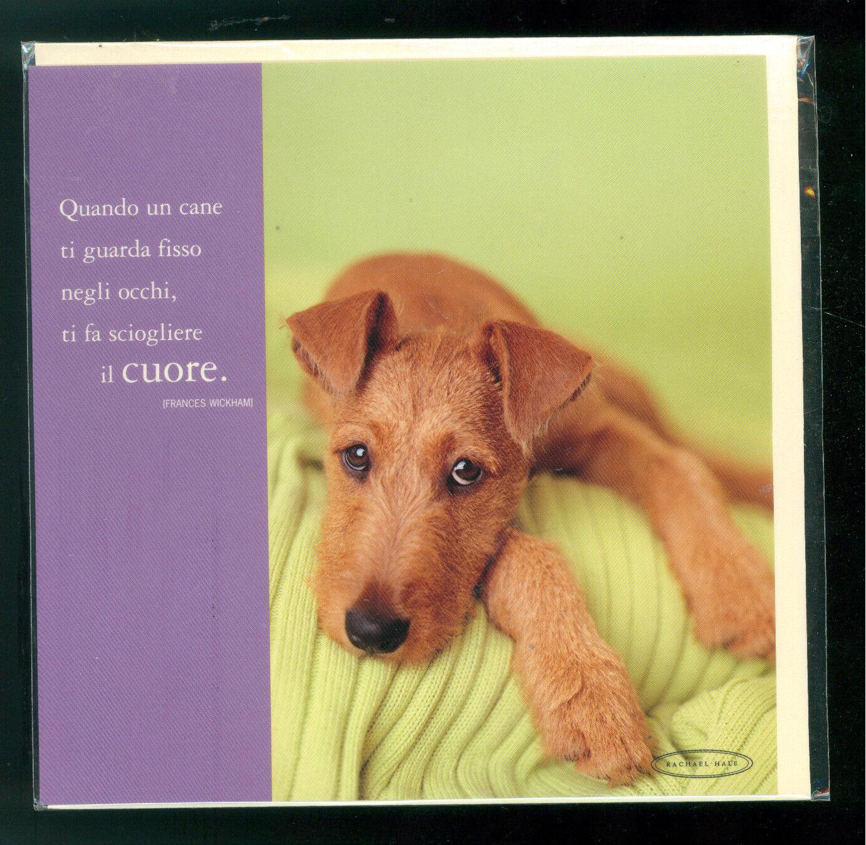 RACHAEL HALE BIGLIETTO AUGURI GIFT CARD MEDIO CANE DOG 2003 IRISH
