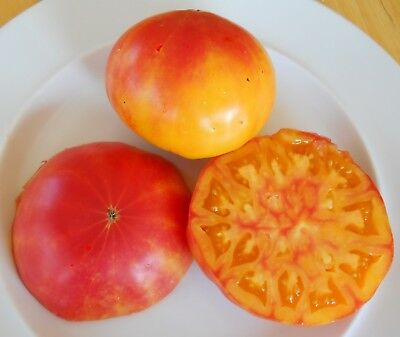 Pineapple Tomato Seeds- Organic- Heirloom Variety- 30+ 2018 - Pineapple Tomato