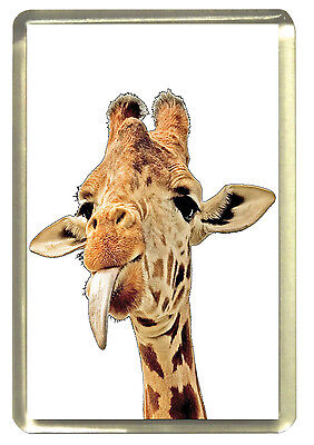 Cheeky Giraffe Fridge Magnet