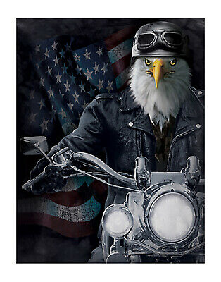 Biker Eagle with STARS AND STRIPES - 12x16 Print 3D Lenticular Poster