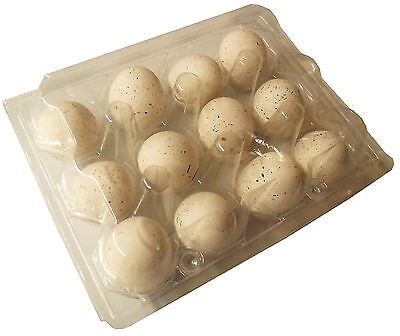 200 Pack Rite Farm Product 12 Egg Clear Poly Quail Carton Tray Bobwhite Coturnix