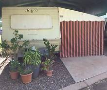 1985 Jayco Coorparoo Brisbane South East Preview