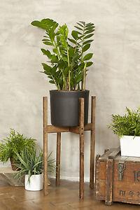 wooden plant stand ebay. Black Bedroom Furniture Sets. Home Design Ideas