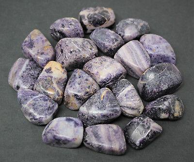 Charoite Gem - 2 Medium Polished Charoite Tumbled Stones (Purple Stone, Crystal Healing Reiki)