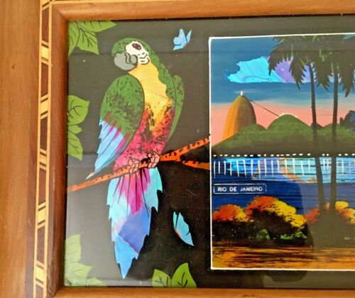 Vintage Butterfly Wing Parrot Inlay Wood & Glass Tray Rio de Janeiro Brazil 16x9