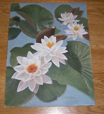 NATURE FLOWERS WHITE LOTUS LILY PADS POND BOTANICAL WATER GARDEN OIL PAINTING