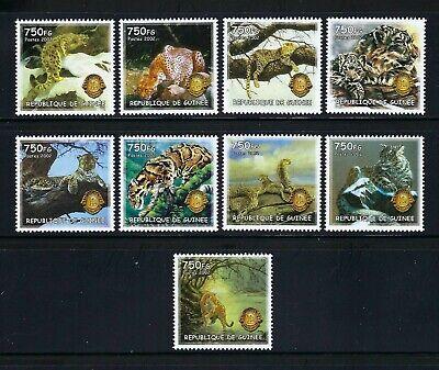 Guinea 2002  Animaux Sauvages-Wild Animals/Wild Cats/Lions International MNH Set