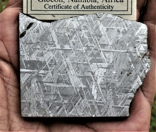 74.0 gram  ECTHED GIBEON METEORITE SLICE - NAMIBIA AFRICA - Brilliant etch!