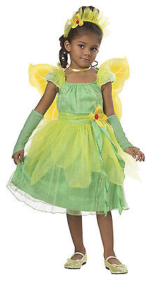 Princess Tiana Blossom Fairy Flower Toddler Costume