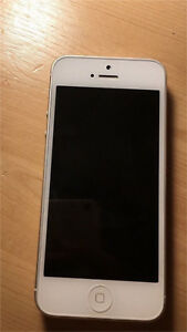 iPhone 5 (great condition)