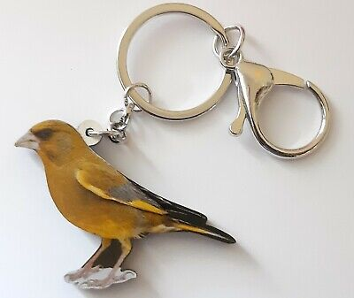 PLASTIC GREENFINCH BREEDER BREEDING CAGE AVIARY KEY RING ENTHUSIAST ACRYLIC 60mm