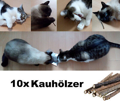 10 Matatabi Kauhölzer Sticks für Katzen Holz Catnip Katzenminze Baldrian Zähne