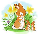 Bunny Bumpkin