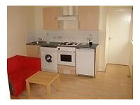 AMAZING VALUE SUPER 1 BEDROOM FLAT NEAR ZONE 2 TUBE, 24 HR BUSES, TRAIN-10 MINS TO KINGS CROSS