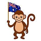 flag_monkey