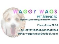 Waggy Wags Dog Walking Service Fully Insured/great rates/great references (Dog Walking/Dog Walker)