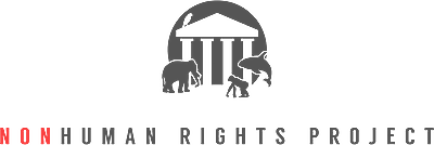 Nonhuman Rights Project
