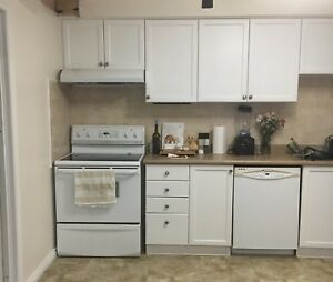 Kitchen Cupboards - white