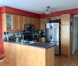 SALE PENDING: Used Kitchen Cabinets and Countertop