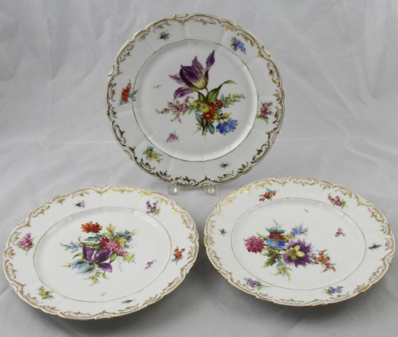 3 Dresden Meissen Porcelain Dinner Plates Flowers & Insects Gold Rose Mark 10""