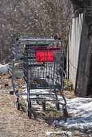 Offering $10 for Shopping Carts!