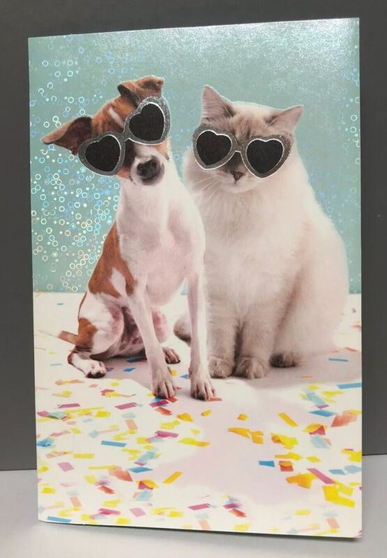 Happy Birthday Pet Lover Cat And Dog American greetings Blue Confetti Card Funny