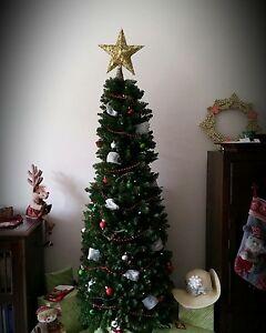 Slim Christmas Tree Ormond Glen Eira Area Preview