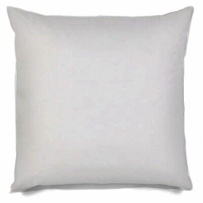 30x30 Pillow Insert Euro Throw Pillow Bolster Decorative Sham Stuffer 30 inch ()