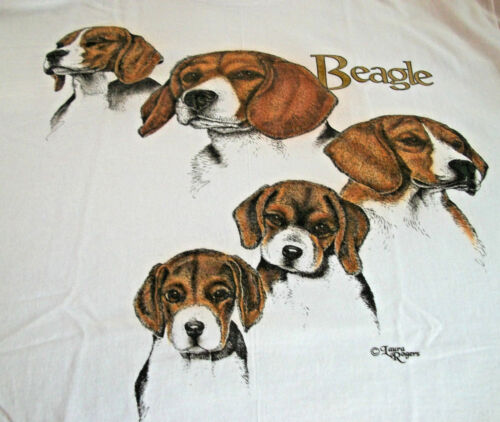 "Beagle T-shirt  "" White "" LG ( 42 ~ 44 )"