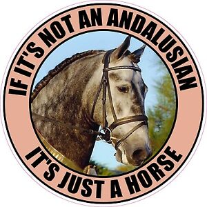 IF-ITS-NOT-AN-ANDALUSIAN-ITS-JUST-A-HORSE-STICKER