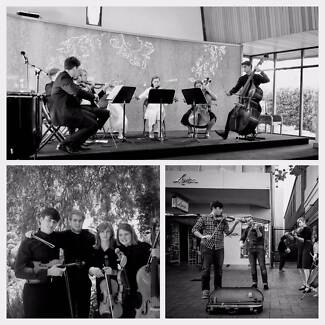 Daly String Quartet, a family ensemble for your wedding.