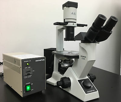 Warranty Olympus Inverted Fluorescent Phase Contrast Cell Culture Microscope