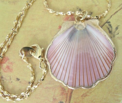 Collectible Vintage Summer Shell Necklace with Beautiful Chain