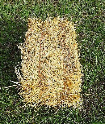 Wheat Straw Bale