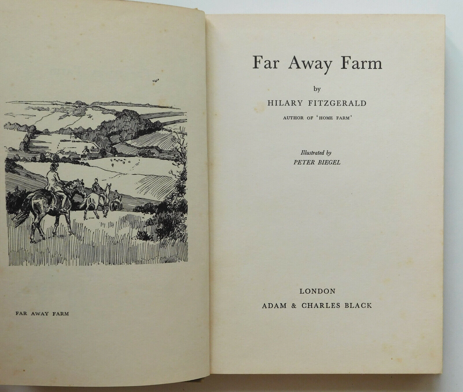 Far Away Farm pony book 1950s by Hilary Fitzgerald childrens horse story Biegel