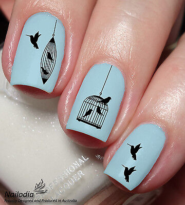 Bird Cage Nail Art Sticker Water Transfer Decal wrap Tattoo 35