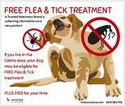 Free tick and flea treatment for dogs- Innisfail and Cairns Innisfail Cassowary Coast Preview