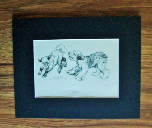 Print Sheepdog Lamb Vernon Stokes Play Time 1947 Bookplate 8x10 Matted Adorable