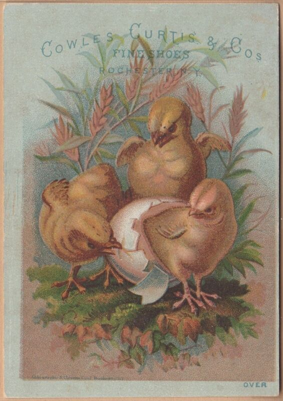 Victorian Trade Card-Cowles, Curtis & Co Shoes-Rochester, NY-Columbus, OH-Chicks