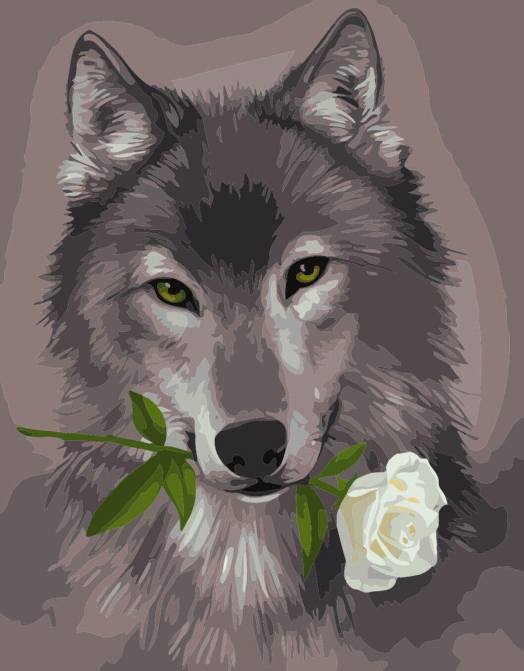 фото волк с розой в зубах вечно