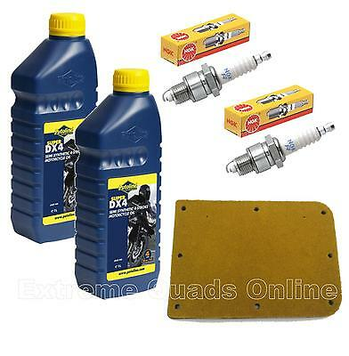 Genuine SMC RAM 250 Stinger Service Pack / Service Kit Quadbike Spares for sale  Spalding