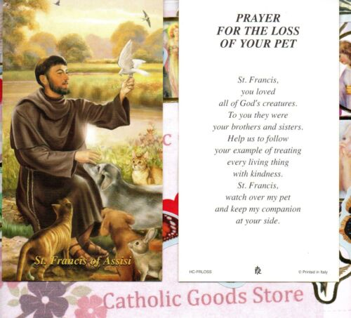 St. Francis of Assisi - Prayer for the Loss of your Pet - Paperstock Holy Card