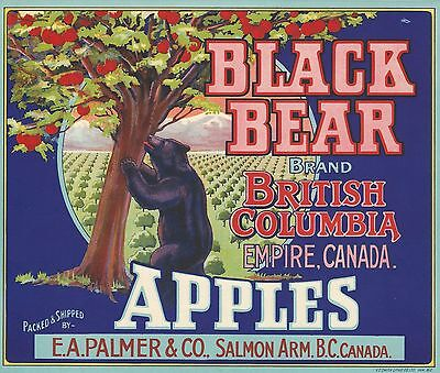 "RARE OLD ORIGINAL 1930 MARAUDING ""BLACK BEAR"" LABEL SALMON ARM BRITISH COLUMBIA"