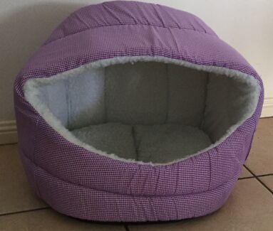 Purple Cat bed