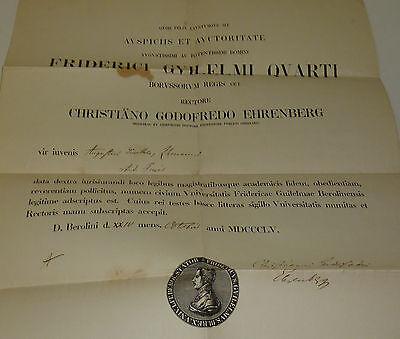 Prof.Christiano Godofredo Ehrenberg Ärztekammer Urkunde Universität Berlin 1895