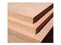 Plywood 18 MM. with hardwood