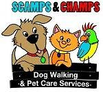 Casual Relief Dog Walker Wanted