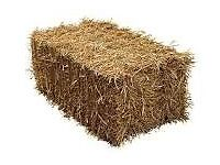 Wanted: square straw bale