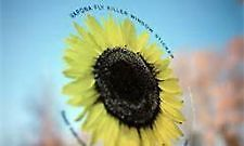 VAPONA SUNFLOWER FLY KILLER WINDOW STICKERS ELIMINATES KILLS FLIES PEST CONTROL